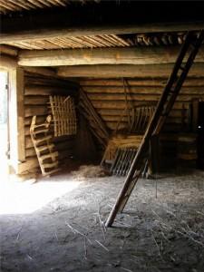 В сарае польского каменщика нашли шедевры Ренессанса.