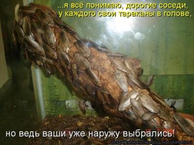 Порно юные русские целки фото 186-403