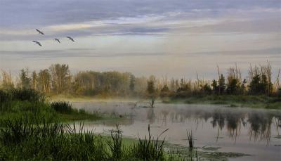 Зеленая долина: фото 5236368