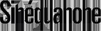 Логотип SINEQUANONE