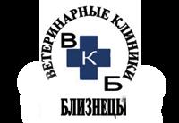 БЛИЗНЕЦЫ, логотип