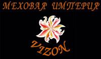 Логотип VIZON