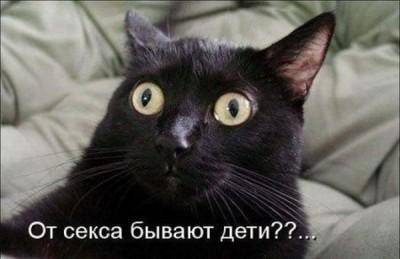 Жириновский занимайтесь сексом раз в квартал